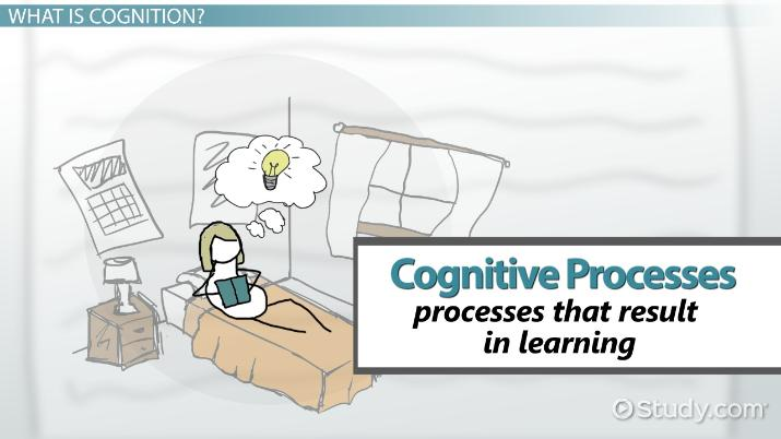 Cognitive Processes in Learning: Types, Definition & Examples