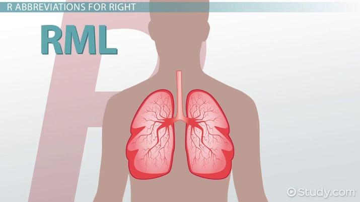 Common Medical Abbreviations P - R - Video & Lesson Transcript