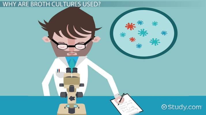 Broth Culture: Definition, Medium & Characteristics - Video