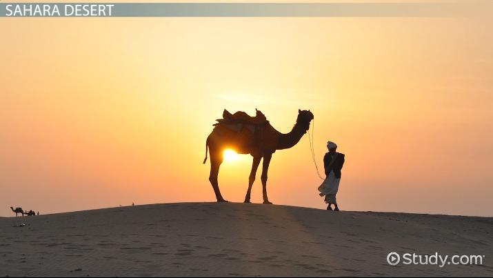 Desert Biotic And Abiotic Factors Video Lesson Transcript