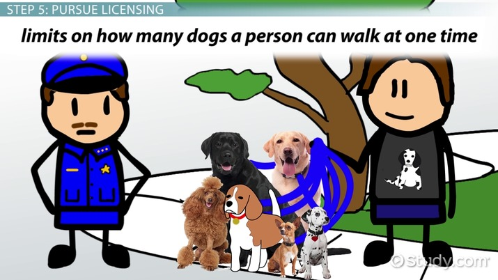 Be a professional dog walker step by step career guide solutioingenieria Gallery
