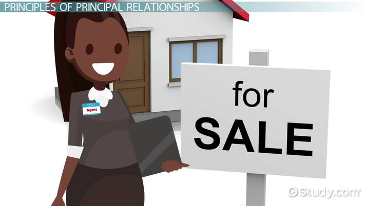 The Principal Agent Relationship Duties In Real Estate Video Lesson Transcript Study Com