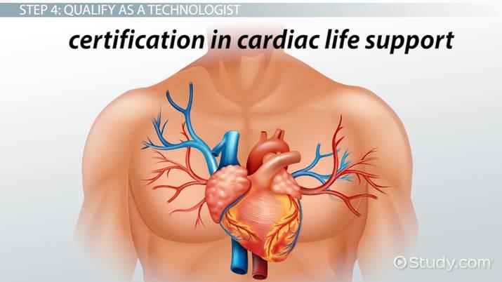 Become A Cardiac Catheterization Technician Step By Step Career Guide