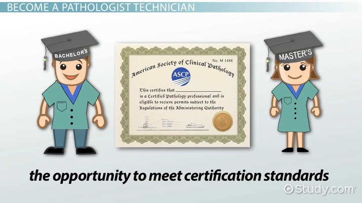 Become a Pathologist Technician | Education and Career Roadmap
