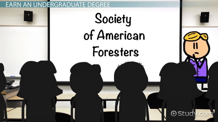 Become a Forester: Education and Career Roadmap