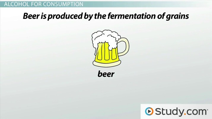What Are The Reactants Of Alcoholic Fermentation Studycom