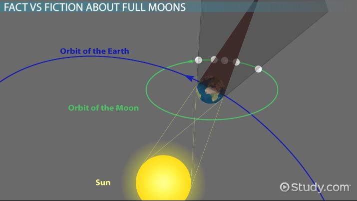 Full Moon Definition Facts Features Video Lesson Transcript