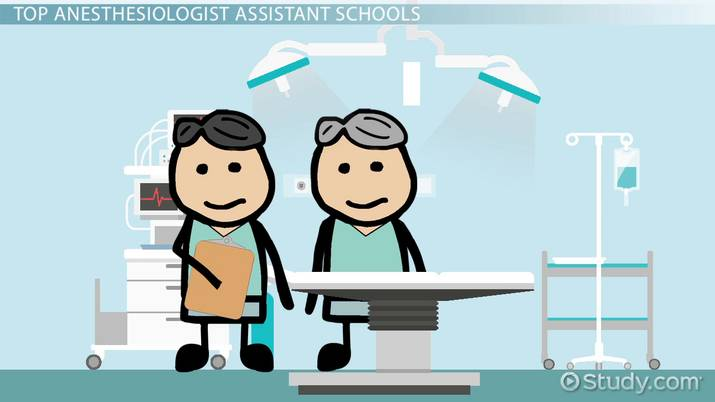 Top Schools with Anesthesiologist Assistance Programs