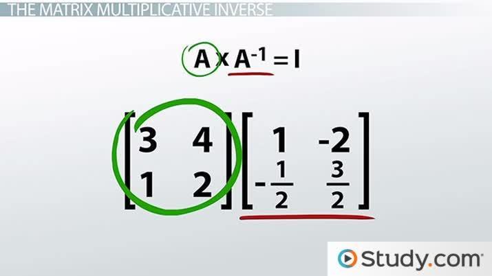 Multiplicative Inverses of Matrices and Matrix Equations