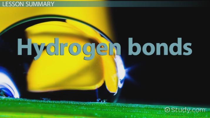 Hydrogen Bonds: Definition, Types & Formation - Video & Lesson