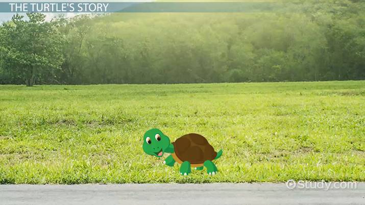The Turtle From The Grapes Of Wrath Symbolism Analysis Quotes Video Lesson Transcript Study Com