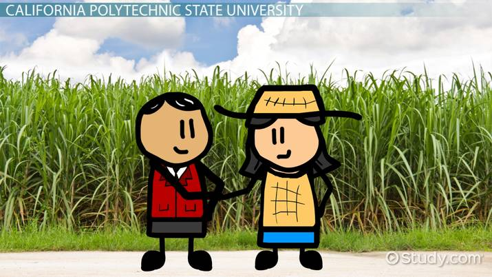 Top Universities with Agribusiness Degree Programs: List of