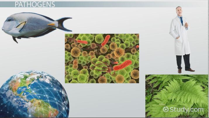 Impact of Pathogens on Biological Communities