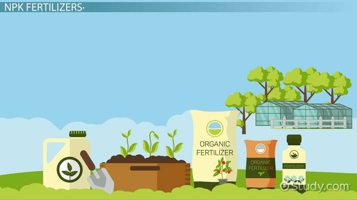 Npk Fertilizers Definition Uses Video Lesson Transcript