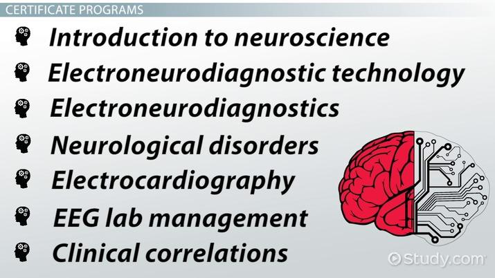 EEG Technician Certification And Certificate Program Information