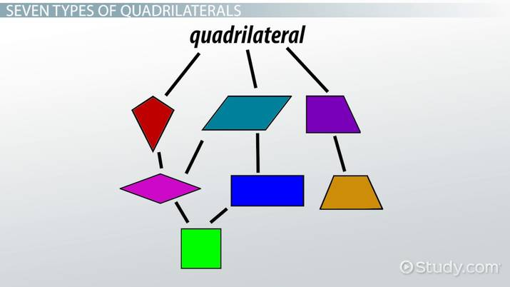 What Is The Hierarchy Of Quadrilaterals Video Lesson