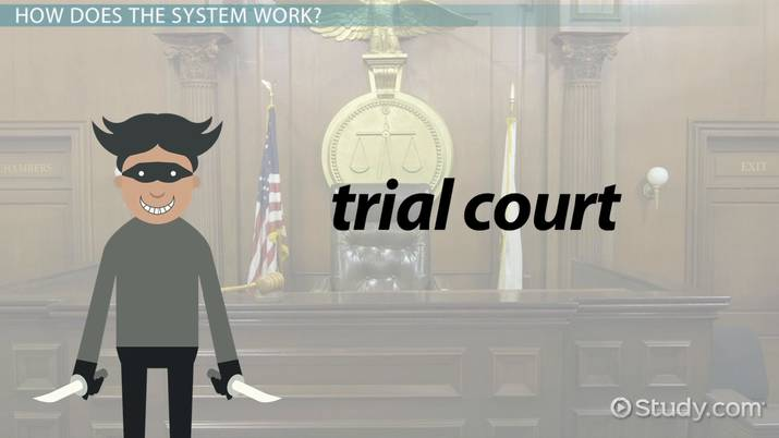 Judicial Power: Definition & Examples