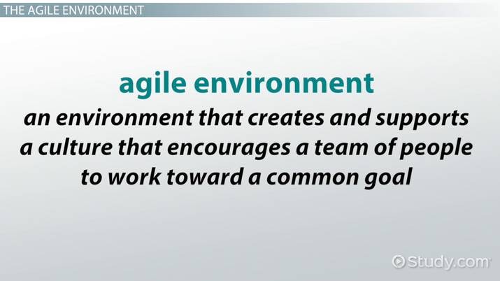 What Is An Agile Environment Definition Example Video