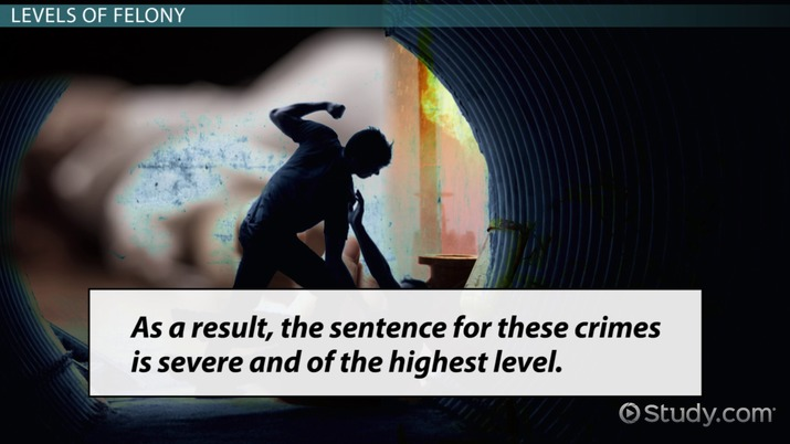 What Are Felonies? - Definition, Types & Levels - Video