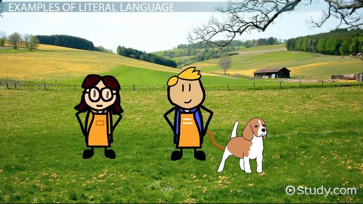 Literal Language Definition Examples Video Lesson Transcript
