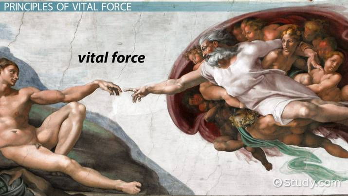 Vital Force Theory: Definition & Principles - Video & Lesson