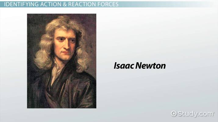 Newton S Third Law Of Motion Examples Of The Relationship