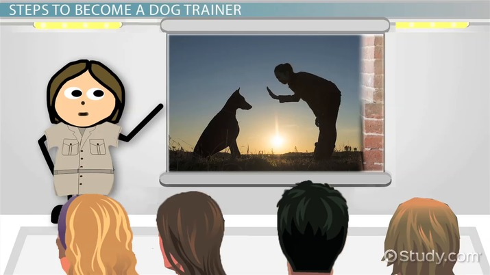 how to become a certified dog trainer illinois