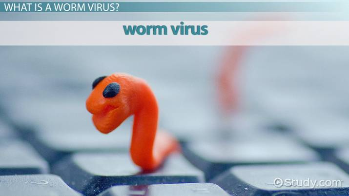 What is a Worm Virus? - Definition, Examples & Removal Tools - Video