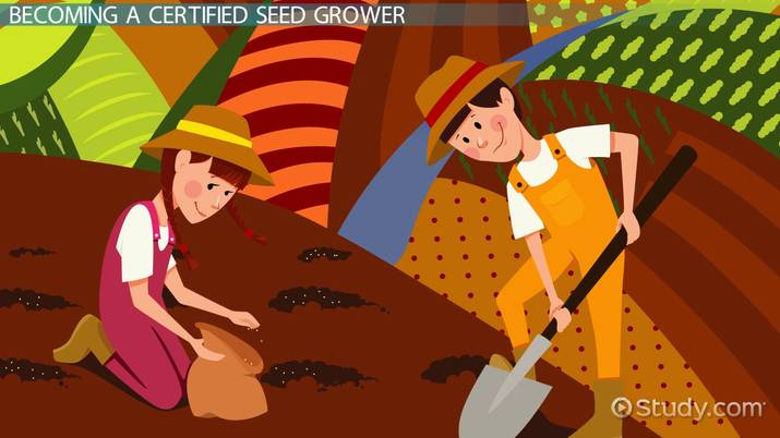 Be a Certified Seed Grower: Certification and Career Roadmap