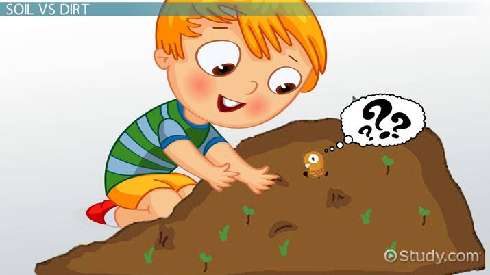 Examples Of Deposition For Kids