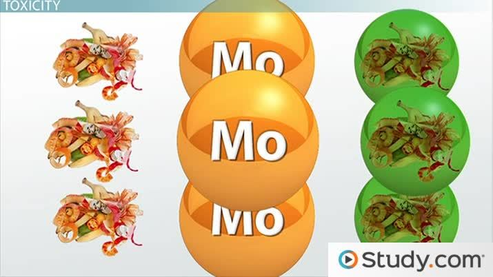 Molybdenum: Deficiency & Toxicity Symptoms - Video & Lesson