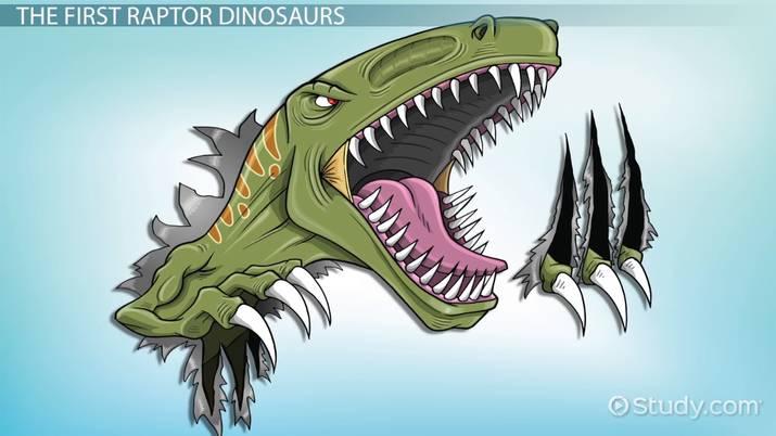Raptor Dinosaurs Types Facts Video Lesson Transcript Study Com