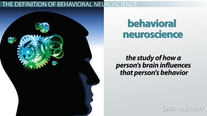 What Is Behavioral Neuroscience? - Video & Lesson Transcript