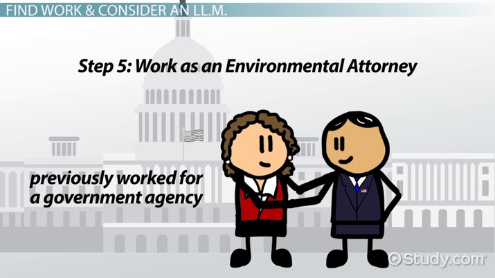How to Become an Environmental Attorney: Career Roadmap
