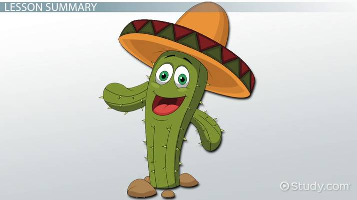 Cactus Lesson for Kids: Facts & Adaptations - Video ...