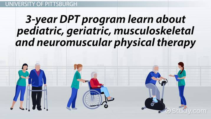 Best Colleges For Physical Therapy >> Top Schools For Physical Therapy
