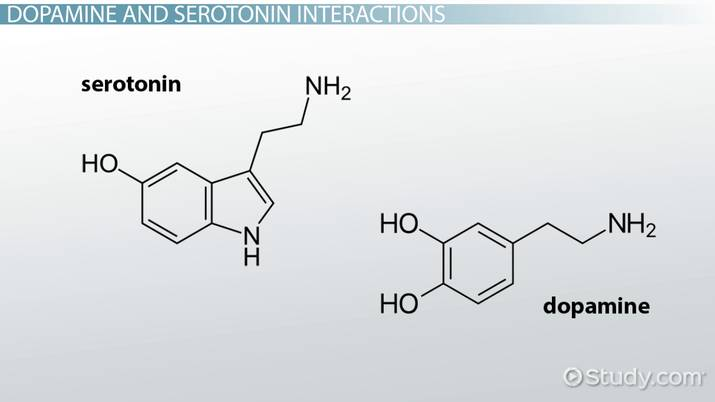 serotonina y dopamina natural