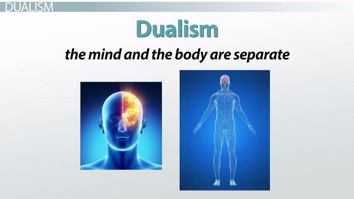 The Self As The Brain According To Paul Churchland Video Lesson