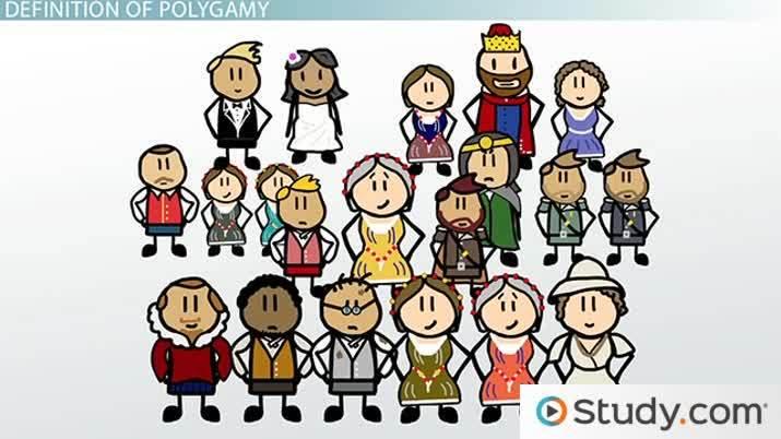 Polygamy definition biology