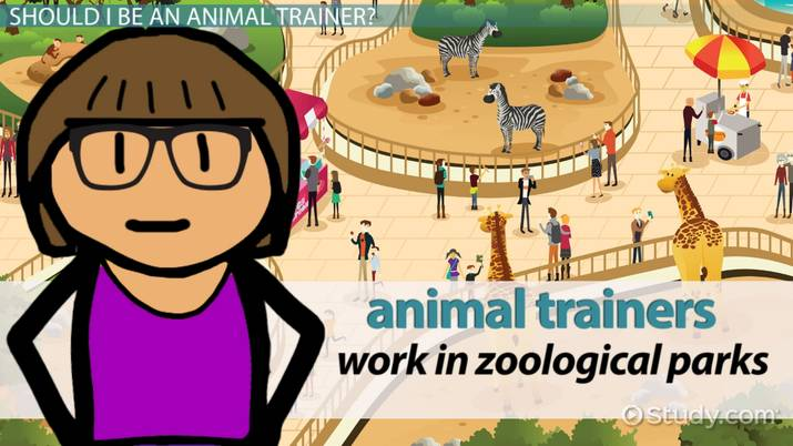 Become an Animal Trainer: Education and Career Roadmap