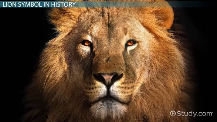 The Lion of the Tribe of Judah: Symbol & Meaning - Video