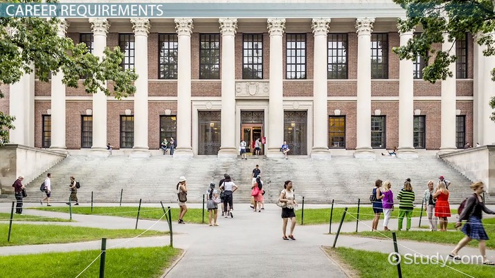 A Harvard University Guide To Executive >> How To Become A Chief Executive Officer Ceo