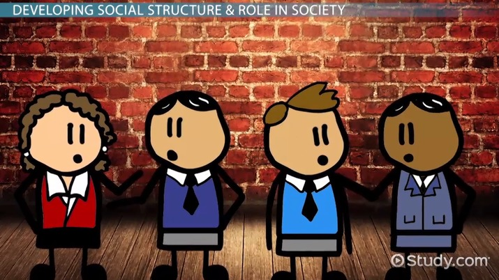what is social structure of society  - definition  u0026 theory