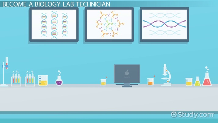 Be A Biology Lab Technician Step By Step Career Guide