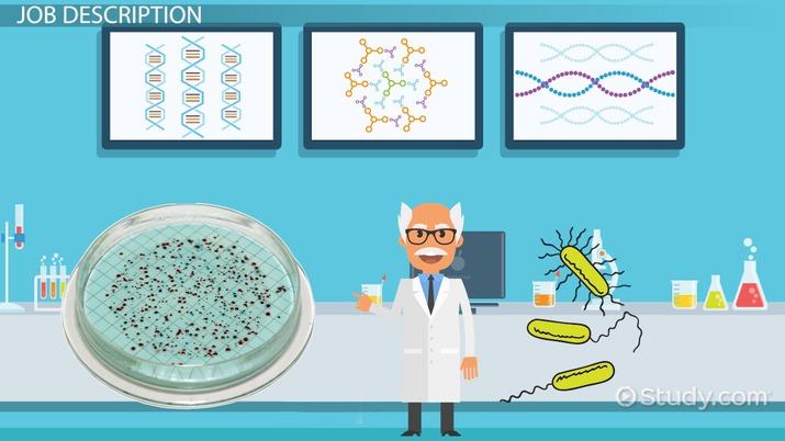 Fermentation Microbiologist: Job Description, Salary and