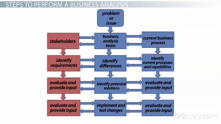 What Is Business Analysis? - Process, Methods & Example - Video