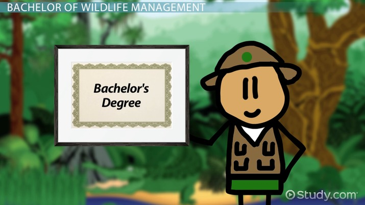 Online Bachelors Degree In Wildlife Management