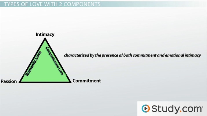 Sternberg's Triangular Theory of Love: Definition, Examples