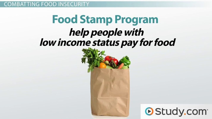 What Is Food Insecurity? - Definition, Impact & Prevention