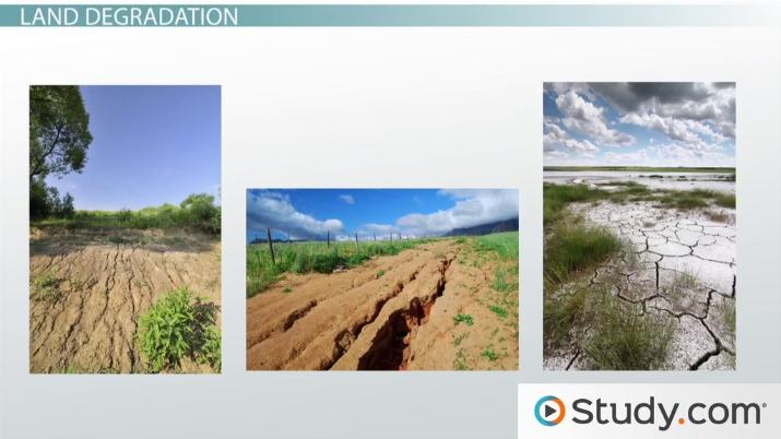 Land Degradation And Habitat Fragmentation The